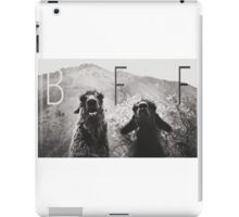 Best Friends Forever, Llama style iPad Case/Skin