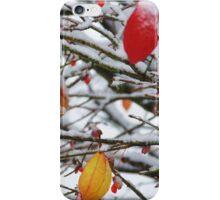 Michigan Winter iPhone Case/Skin