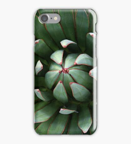Nature's Perfect Abstract iPhone Case/Skin