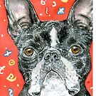 Boston Terrier by didielicious