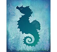 Seahorse of a Different Color ~ Marine Life Photographic Print