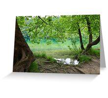 Plitvice Lakes National Park 02 Greeting Card