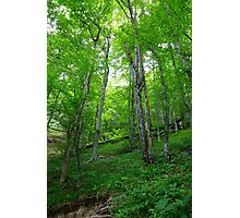 Plitvice Lakes National Park 04 Photographic Print