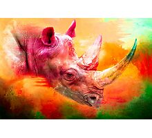 Orange Rhino Photographic Print