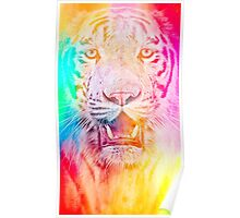Tiger red Poster