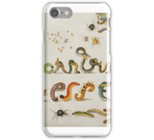 Insects and garden pansy, . Jan van Kessel the Elder 5 iPhone Case/Skin