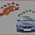 Jaguar, Jaguar, where for art thou Jaguar? by albutross