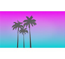 80's Palms Photographic Print