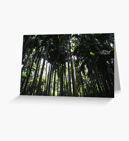 Into The Rainforest  Greeting Card