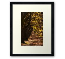 Hahndorf Path Framed Print