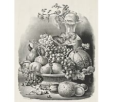 Fruit piece - 1859 - Currier & Ives Photographic Print