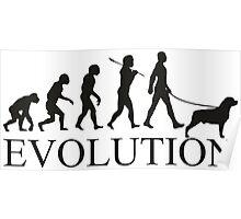 EVOLUTION rottweiler Poster