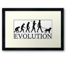 EVOLUTION labrador Framed Print