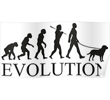 EVOLUTION labrador Poster