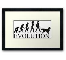 EVOLUTION golden retriver Framed Print