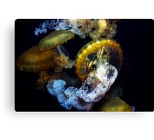 Fabulous Jelly's Canvas Print