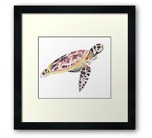 Watercolour Turtle Framed Print