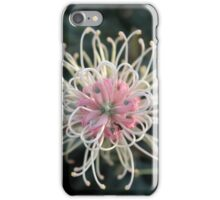 The beauty of the Grevillea Flower iPhone Case/Skin