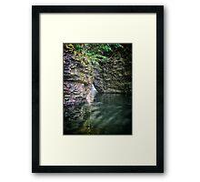 Nay Aug Gorge Framed Print