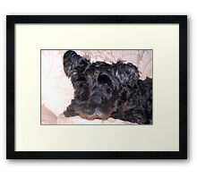 Don't tell me to get off the sofa! Framed Print