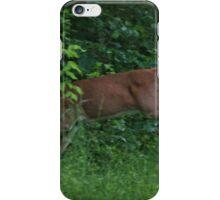 Leaping Deer iPhone Case/Skin