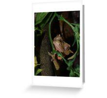 Taru-Crested Gecko Portrait Greeting Card