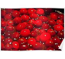 Red Cranberries Poster