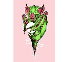 Candy Bat Photographic Print