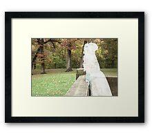 Un petit fantôme Framed Print
