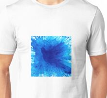 Bird Bath 2 Unisex T-Shirt