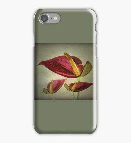 Red Exotic Flower iPhone Case/Skin