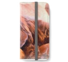 Sussex Spaniel Sleeping iPhone Wallet/Case/Skin