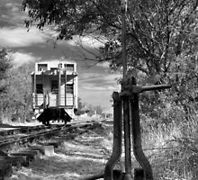 The Switch And The Caboose by James Eddy