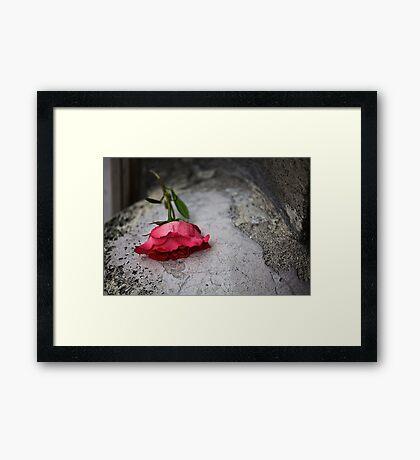sl-week-2-rouge Framed Print