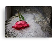 sl-week-2-rouge Canvas Print