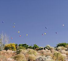Theres A Lot Of Hot Air In The Sky This Morning by © Loree McComb