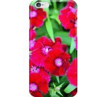 William Clusters iPhone Case/Skin