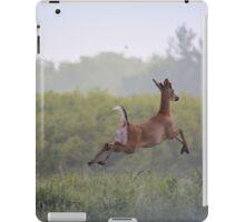 Leaping Away iPad Case/Skin