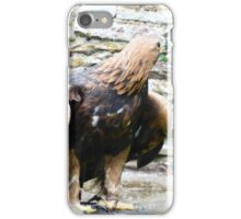 Birds of prey iPhone Case/Skin