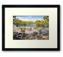 Town Beach, Broome Framed Print