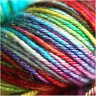 Colorful Yarn Skein for knitters by Trish Peach