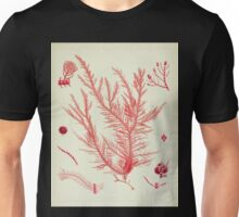 The botany of the Antarctic voyage of H M  discovery ships Erebus and Terror in the Years 1839 1843 Joseph Dalton Hooker V1 163 Unisex T-Shirt