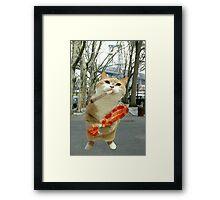 katnip cat Framed Print