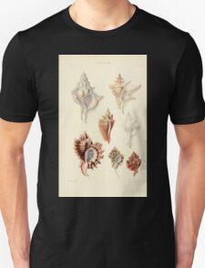 Thesaurus conchyliorum Monographs of genera of shells George Brettingham Sowerby 1887 V1-V5 496 T-Shirt