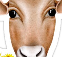 Cows are Vegetarians Funny Saying Sticker