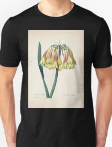 Choix des plus belles fleurs et des plus beaux fruits Pierre Joseph Redouté 1833 069 Beautiful Flowers Finest Fruits T-Shirt