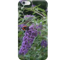 Red Admiral butterfly on rose bay willow herb iPhone Case/Skin