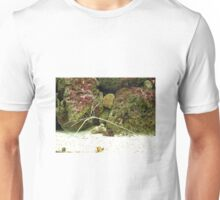 Stick shaped insect by rocks, Kew Gardens Unisex T-Shirt
