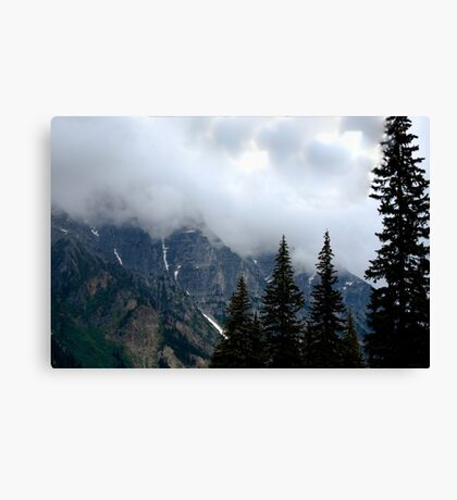 Can't See the Mountain for the Trees Canvas Print