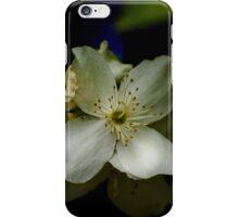 Gaea's Star iPhone Case/Skin